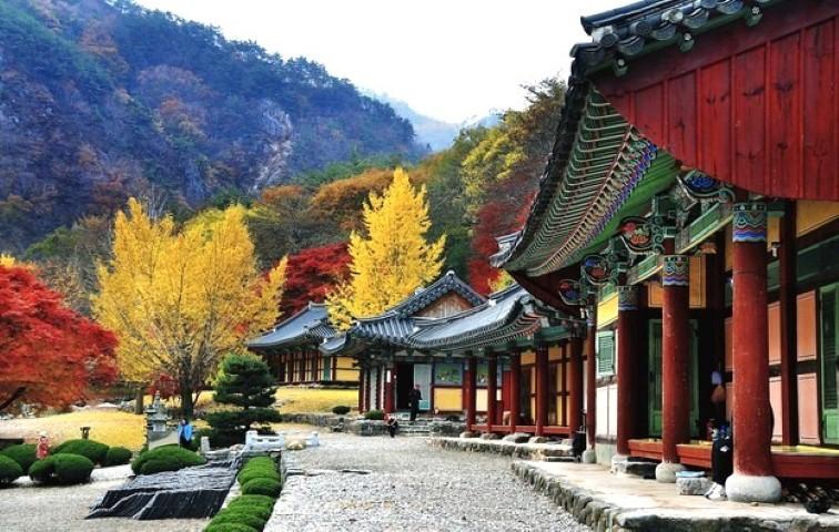 Chùa Bulguksa Hàn Quốc - Địa điểm nổi tiếng ở Hàn Quốc đáng để đi du lịch