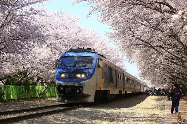 Đi du lịch với những địa điểm nổi tiếng ở Hàn Quốc