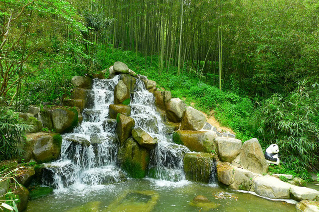 Cảnh sắc tuyệt trần của một trong 5 địa điểm nổi tiếng ở Hàn Quốc - Vườn trúc Juknokwon Hàn Quốc