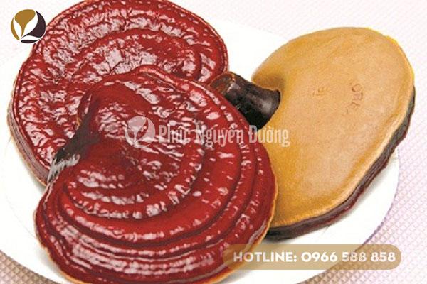 Những lưu ý khi sử dụng nấm linh chi Hàn Quốc