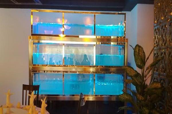 3 lưu ý khi lắp đặt bể cá hải sản cho nhà hàng nhỏ bạn cần note