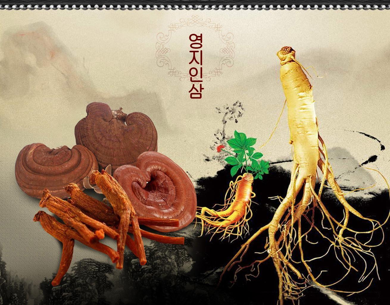 Hồng sâm và linh chi là hai thảo dược quý từ thiên nhiên