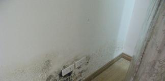 Nguyên nhân và 3 biện pháp chống thấm ngược cho tường nhà cơ bản